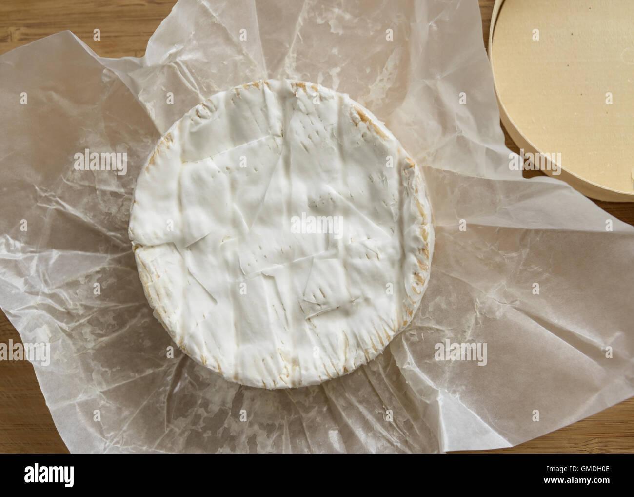 Camembert Käse auf einem Holzbrett Stockbild