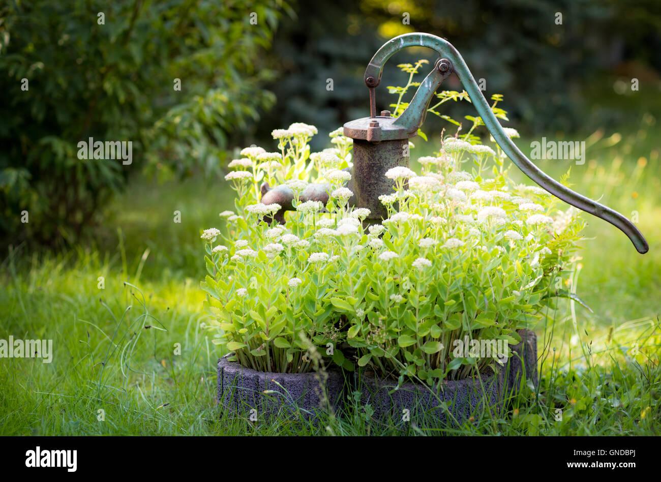 Wasserpumpe Garten Montenegro