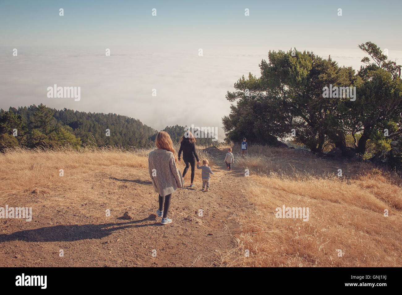 Mutter mit vier Kindern, Tamalpais Valley, California, Amerika, USA Stockfoto