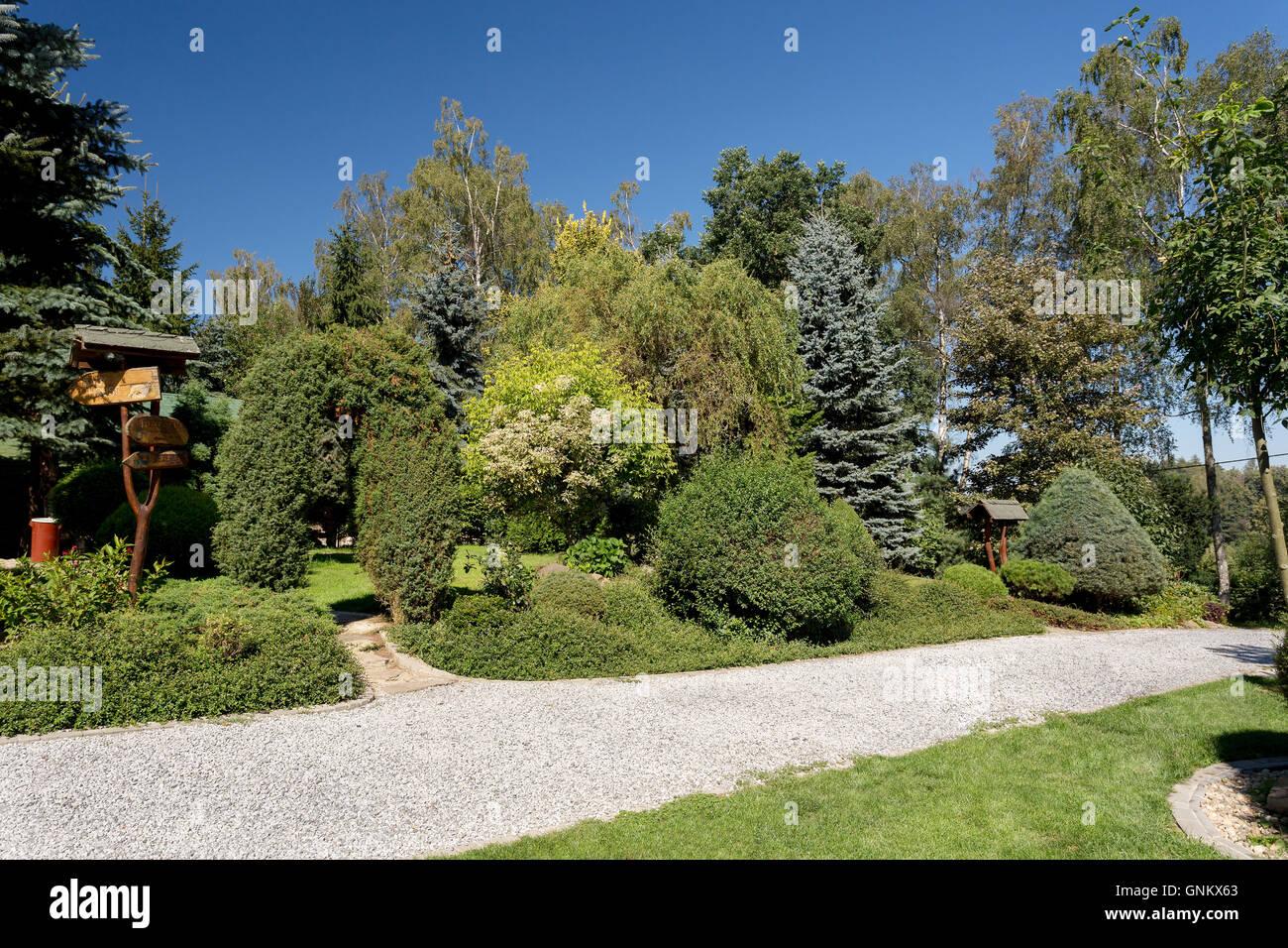 Luxus garten  Schönen Sommer Gartengestaltung mit Nadelbaum Bäume, grüne Gras- und ...