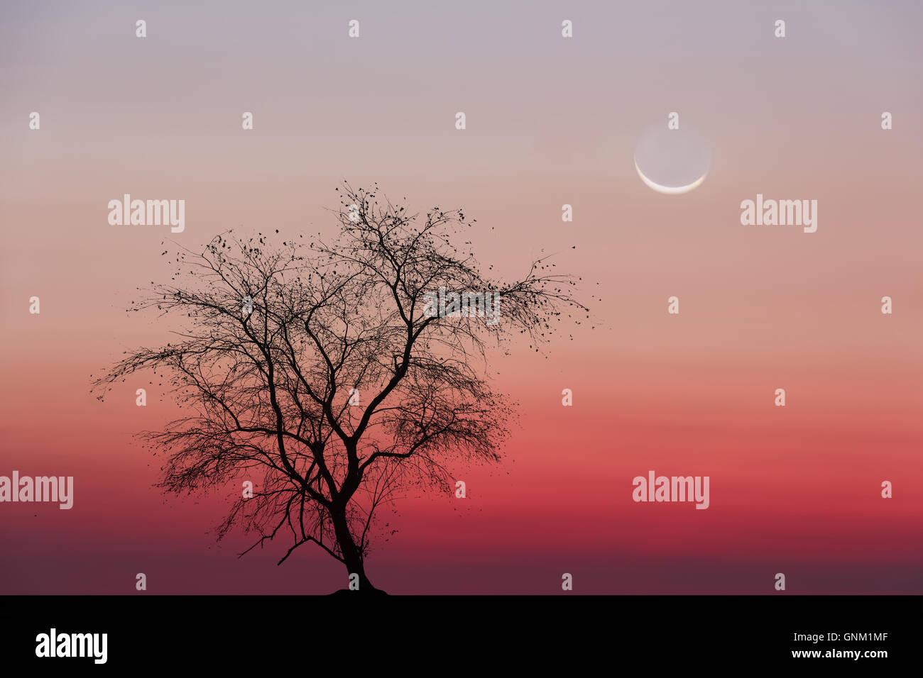 Baum Mond Grafiken Stockbild