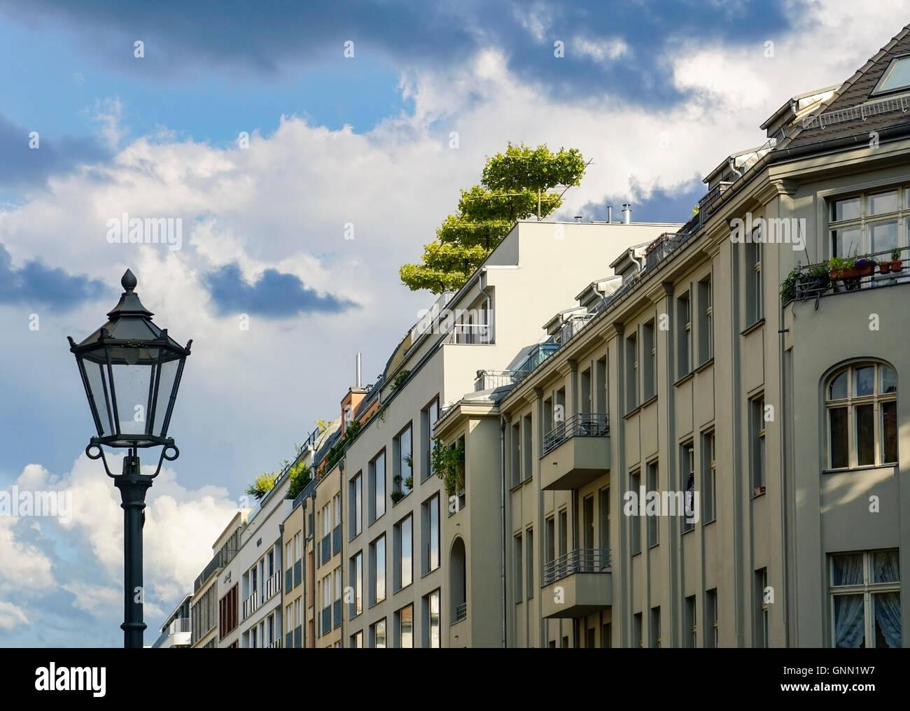 Hochwertige Immobilien mit Bäumen auf dem Dach in Berlin Mitte, Deutschland Stockfoto