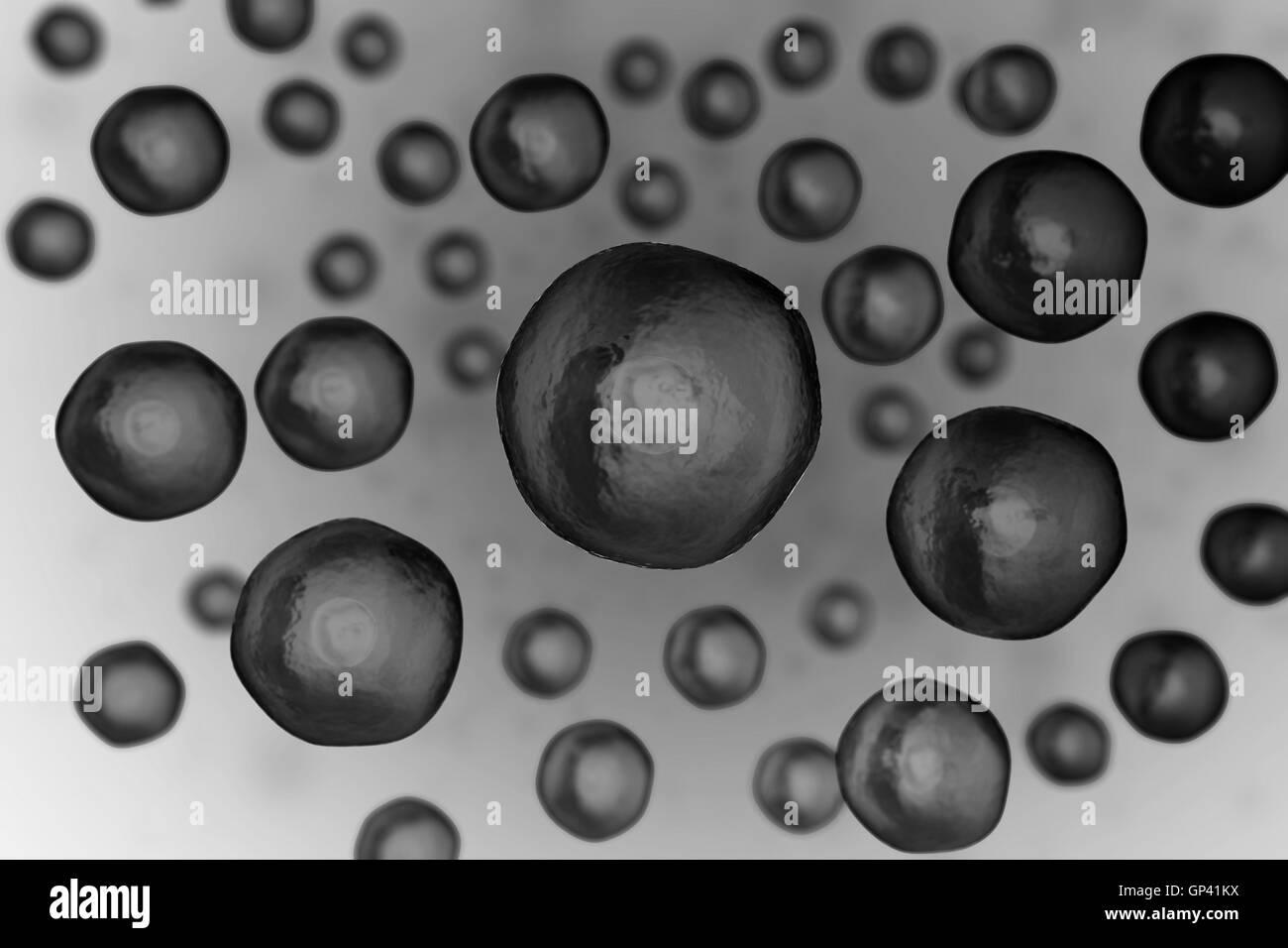 Ell unter mikroskop leben und biologie medizin wissenschaft