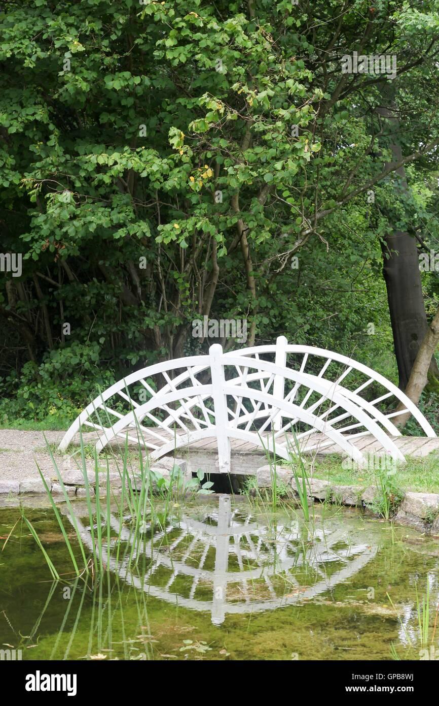 Kleine Holzbrücke In Einem Garten Mit Reflexion Stockfoto Bild