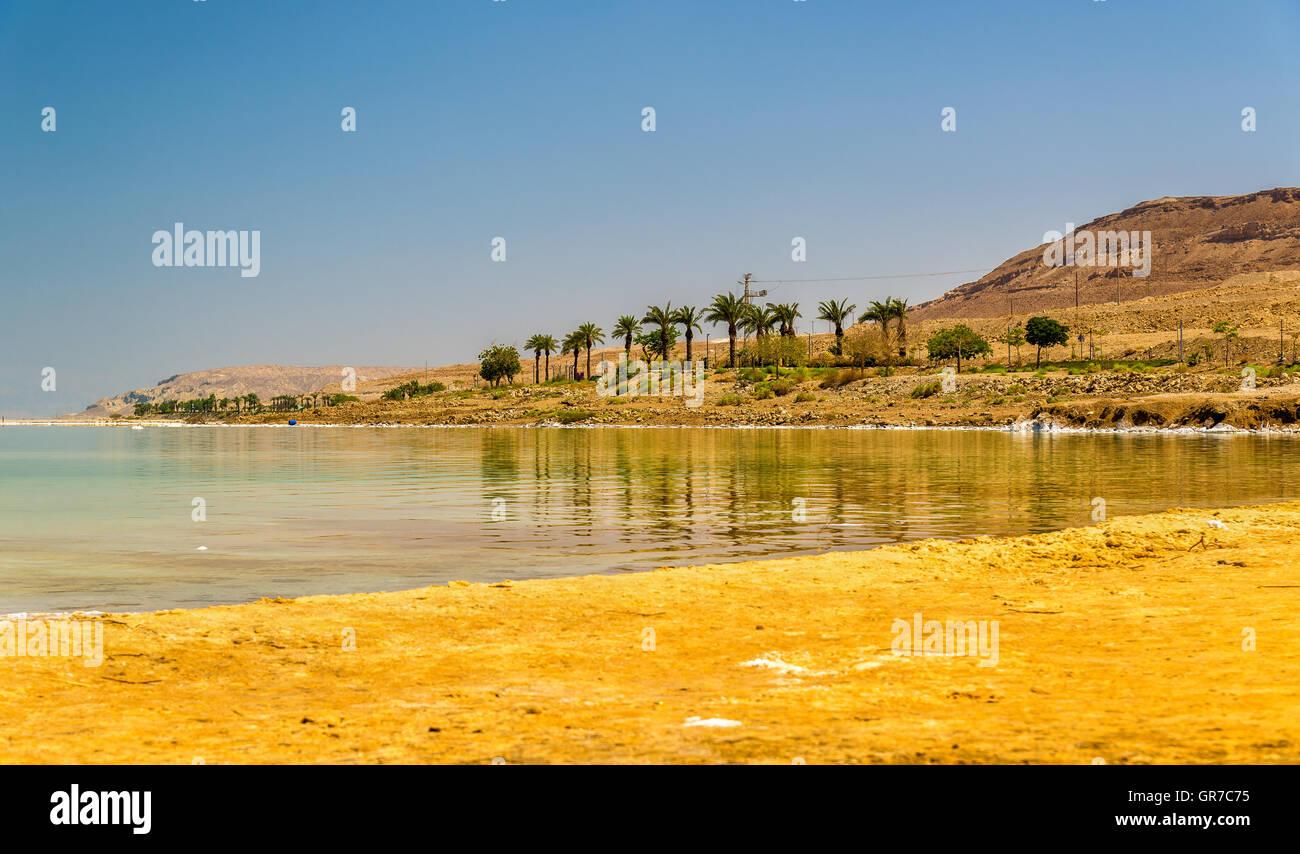 Öffentlicher Strand auf den tot sehen in Ein Bokek Stockbild