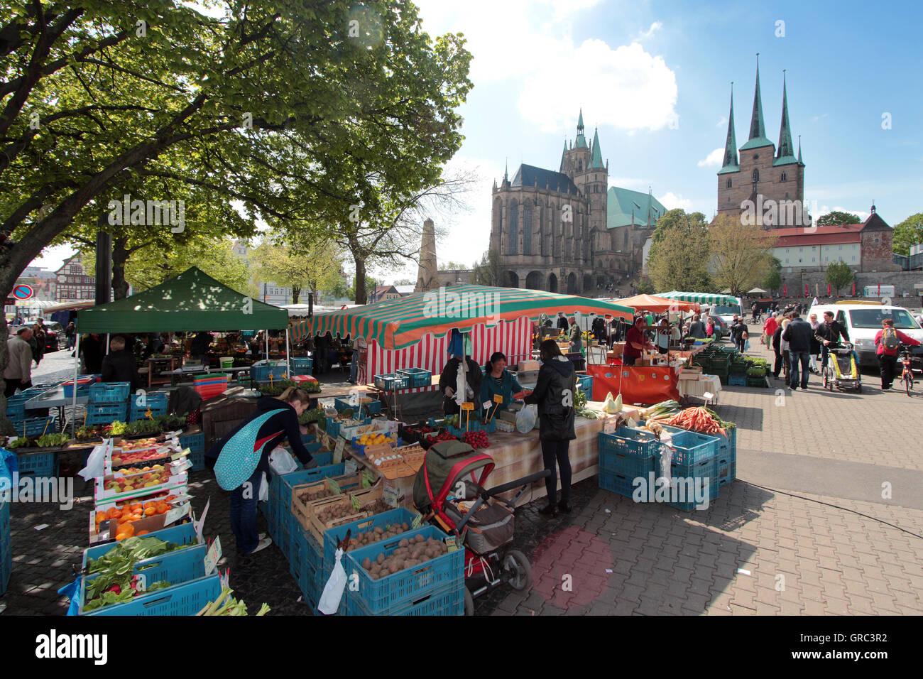 Markt am Domplatz In Erfurt Stockbild