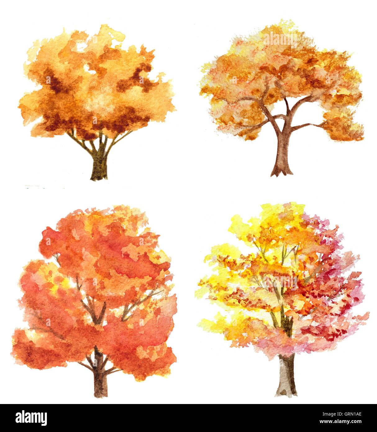 satz von aquarell hand gezeichnete herbst bäume isoliert