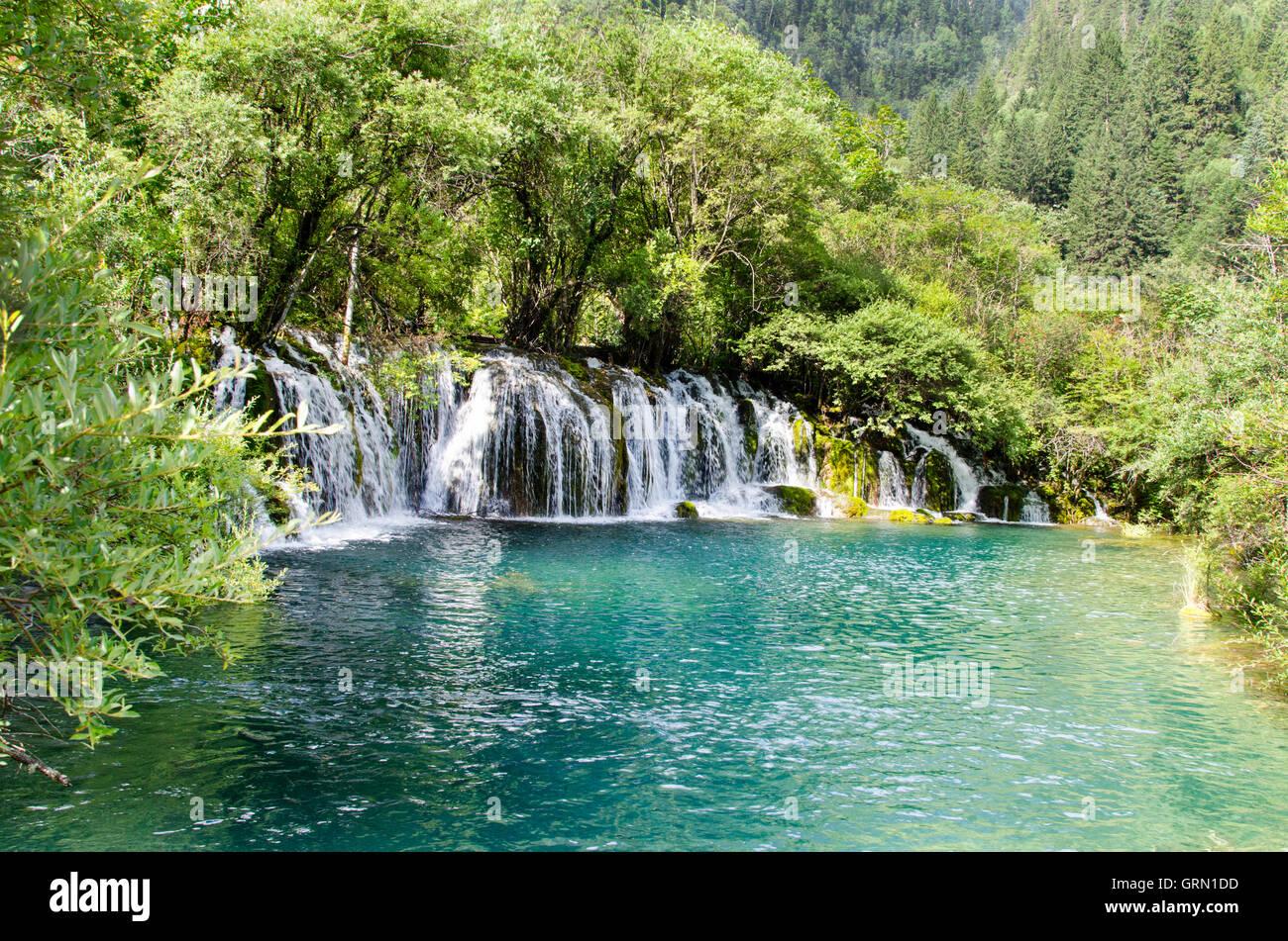 Pfeil Bambus Wasserfall Jiuzhaigou Nationalpark Szechuan China