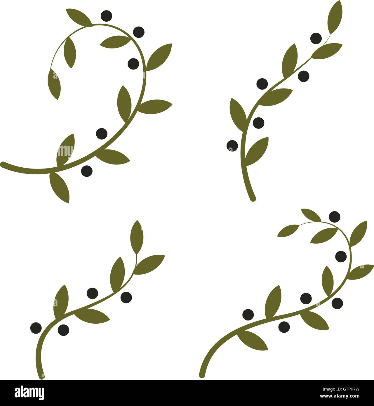 isolated olive branch vector logo stockfotos isolated olive branch vector logo bilder alamy. Black Bedroom Furniture Sets. Home Design Ideas