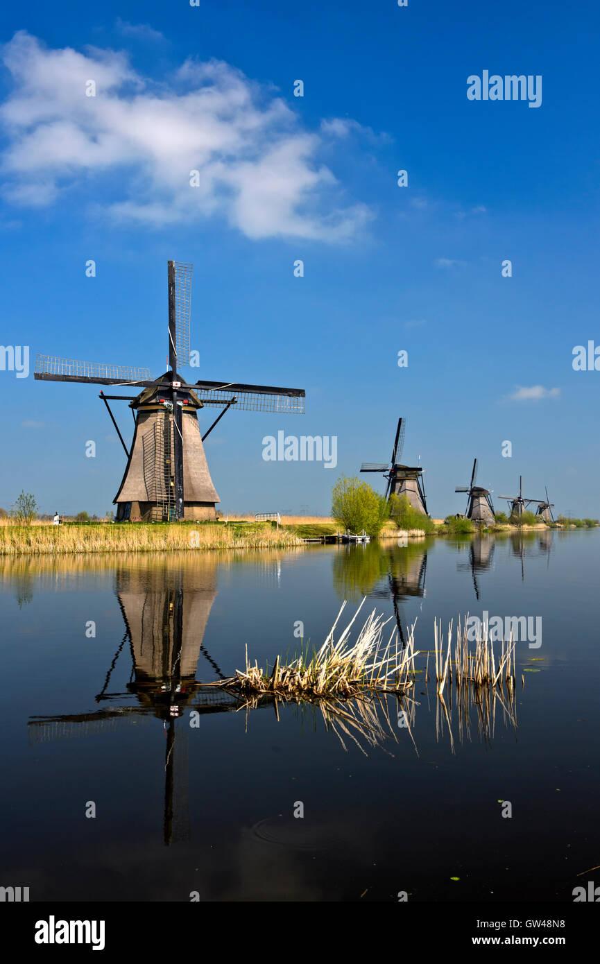 Holländische Windmühlen an einem Kanal, Kinderdijk, Ausflüge Polder, Südholland, Niederlande Stockbild