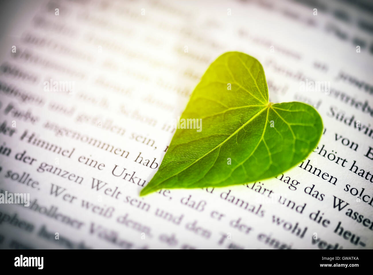 Herzförmiges Blatt auf einer Buchseite, Herzfoermiges Blatt Auf Einer Buchseite Stockbild