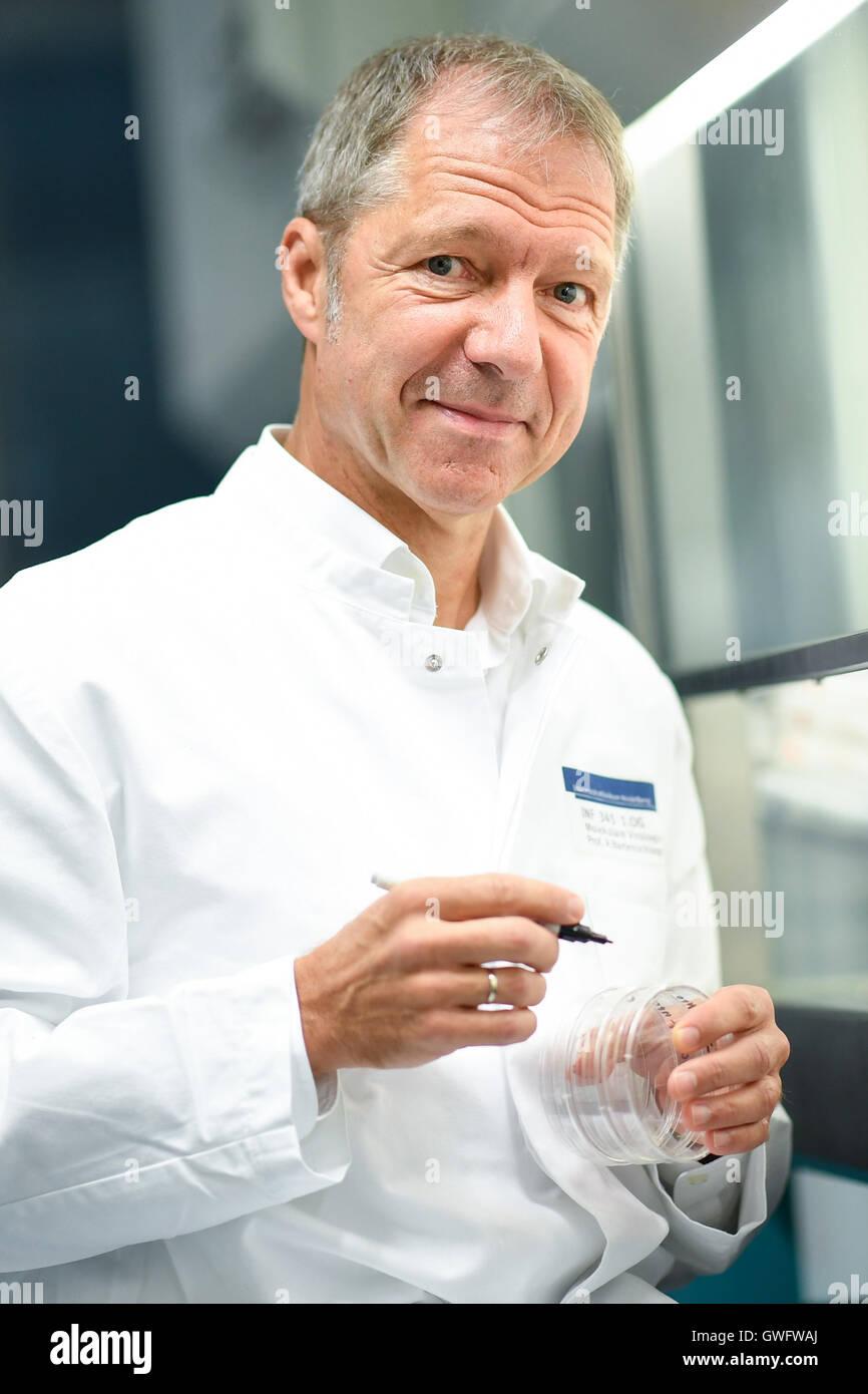 Heidelberg, Deutschland. 13. Sep, 2016. Virologe und Krebs-Forscher Ralf Bartenschlager in einem Labor der Abteilung Stockbild