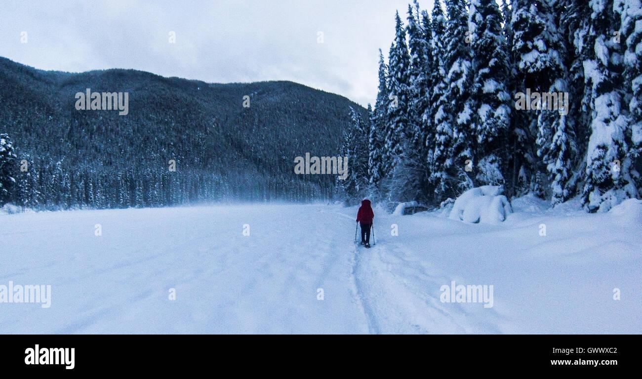 Schneeschuhwandern Manning Park, Britisch-Kolumbien, Kanada Stockbild