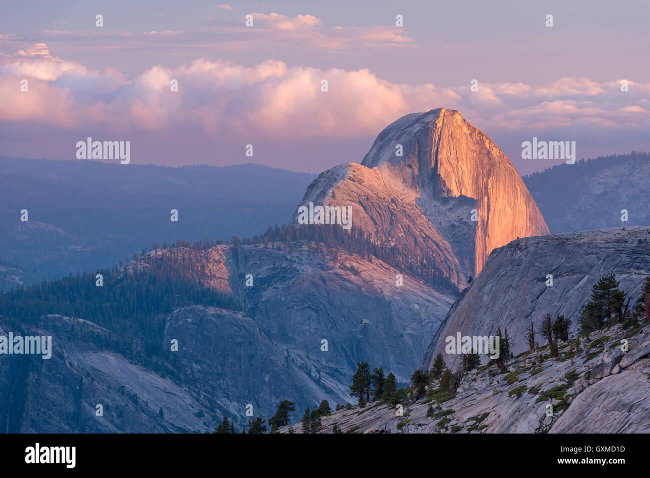 Letztes Licht auf Half Dome, fotografiert von Olmsted Point, Yosemite-Nationalpark, Kalifornien, USA. (Juni) im Stockbild