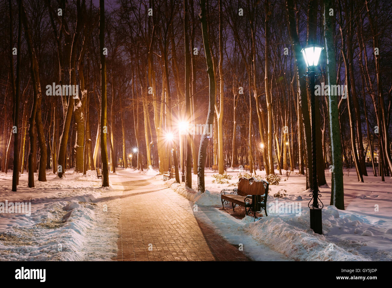 park benches at night stockfotos park benches at night bilder alamy. Black Bedroom Furniture Sets. Home Design Ideas