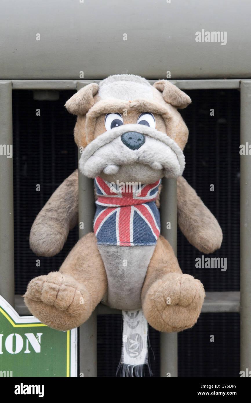 britische bulldogge spielzeug angebracht, um auf eine britische