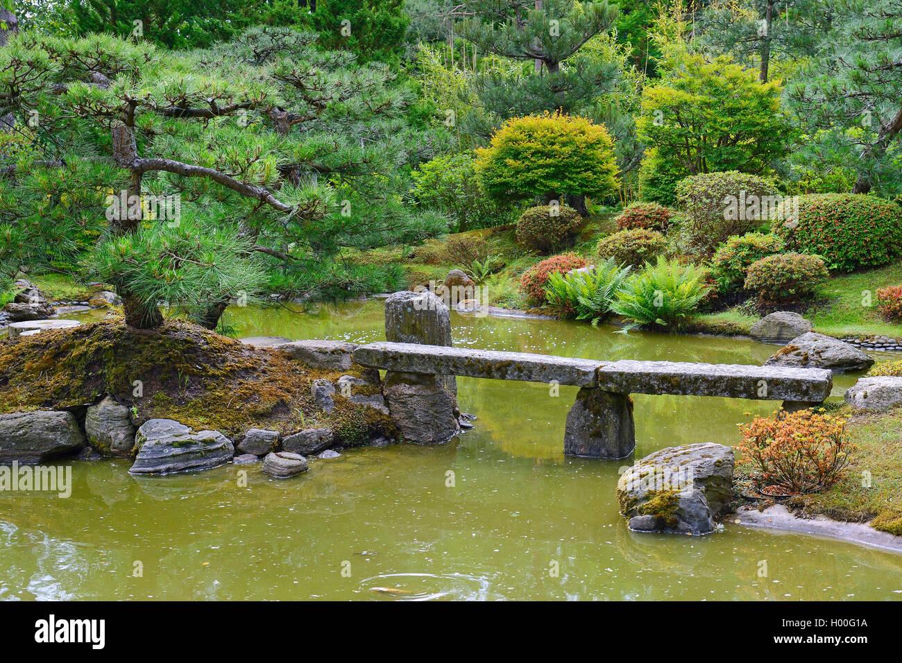 Typischer Japanischer Garten Mit Steindekorationen Und