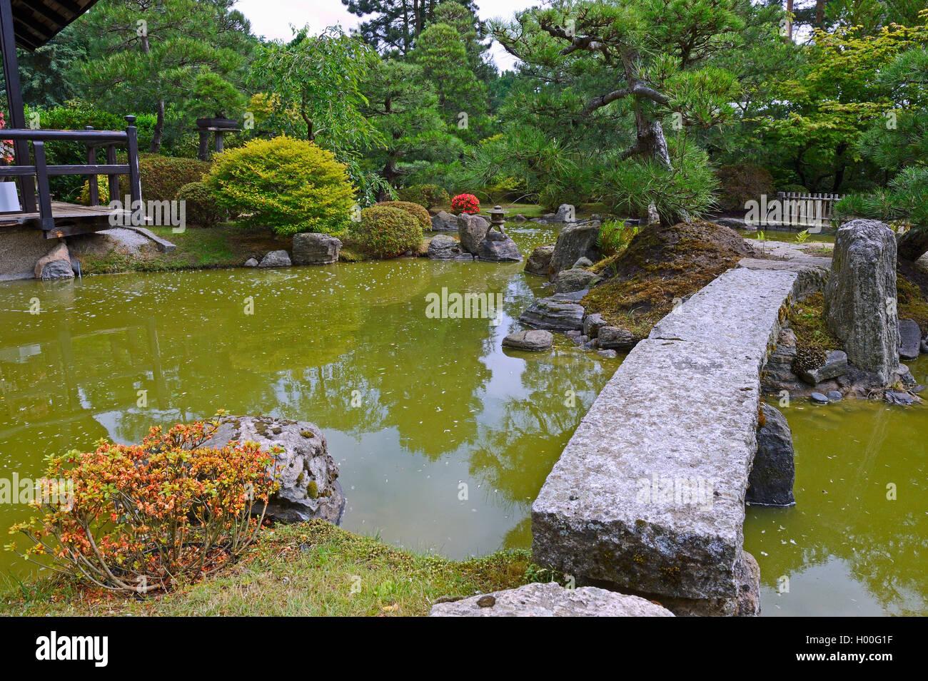 Typischer Gartenlandschaft Garten Mit Steindekorationen Und Koiteich