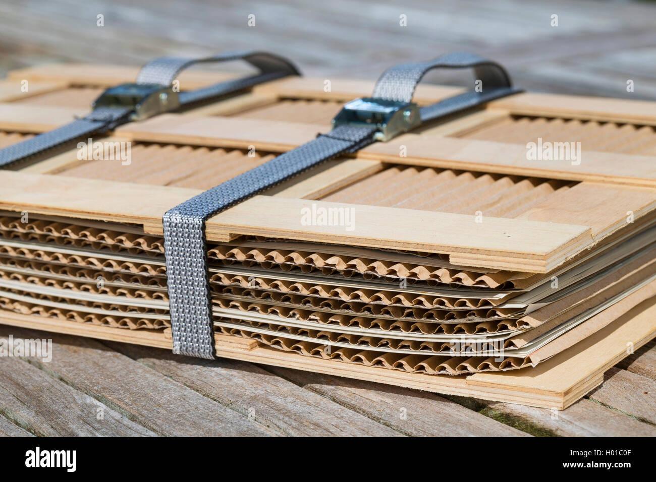 pflanzenpresse wird mit spanngurten zusammengezurrt deutschland macht ein herbarium. Black Bedroom Furniture Sets. Home Design Ideas