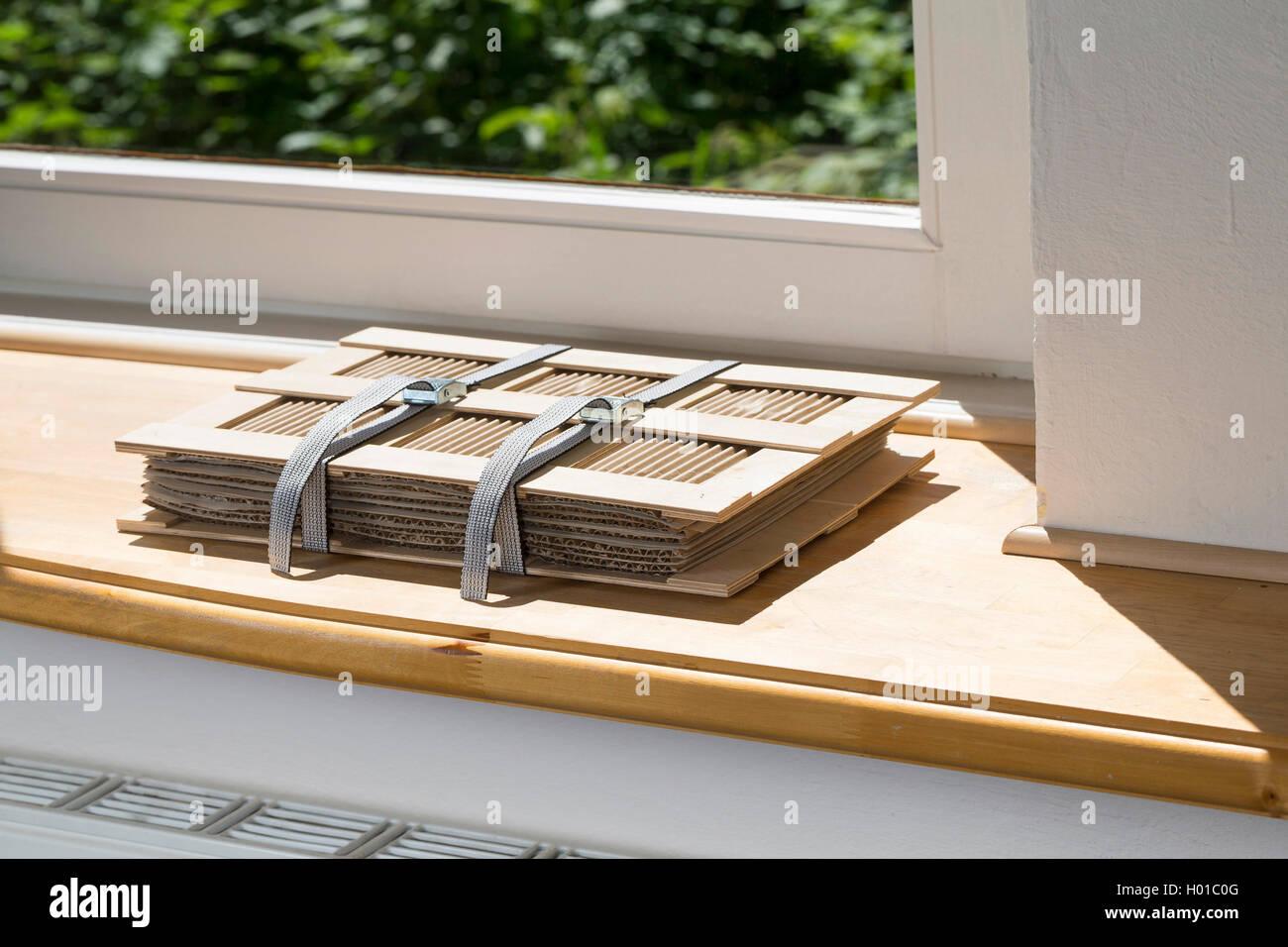 pflanzenpresse liegt auf fensterbank schlug der heizung ein einem trockenen ort deutschland. Black Bedroom Furniture Sets. Home Design Ideas