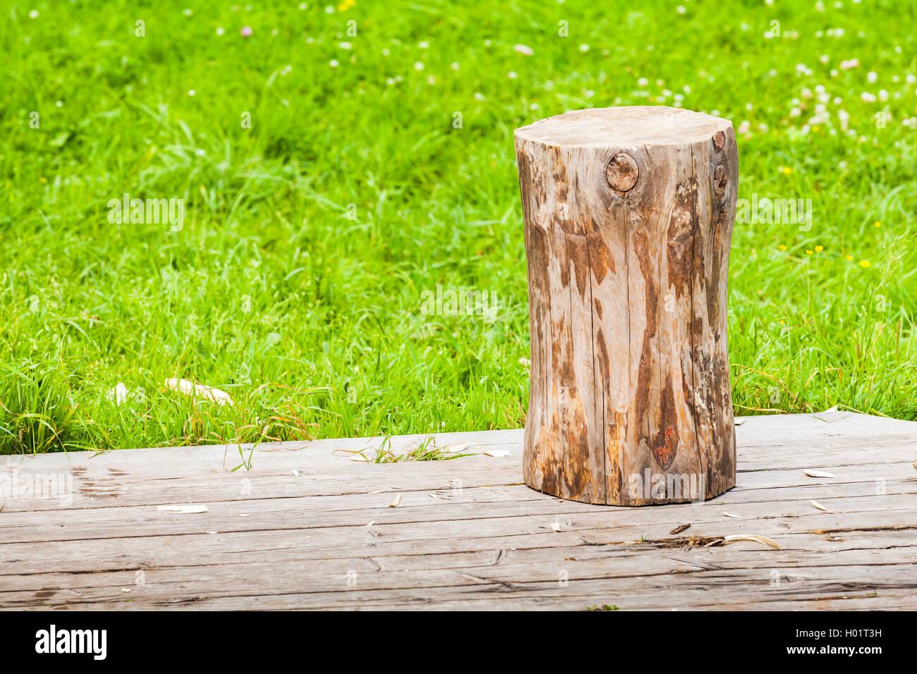 Fußboden Im Sommergarten ~ Log steht auf ländlichen holzböden im sommergarten mit frischen