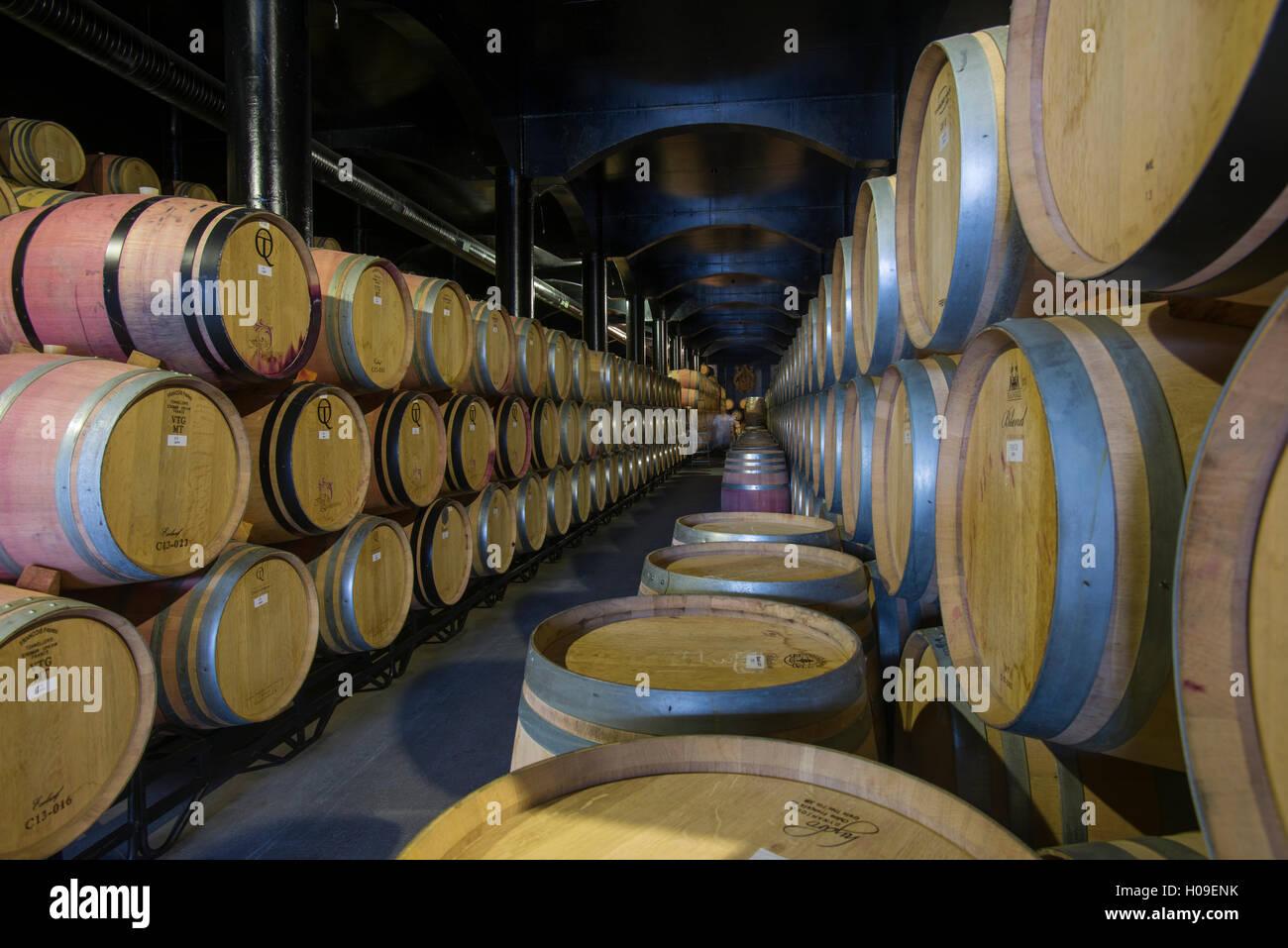 Wein Lagerung in Eichenfässern in einem Keller in einem Weingut in der Region Alto Douro Portugal, Europa Stockbild
