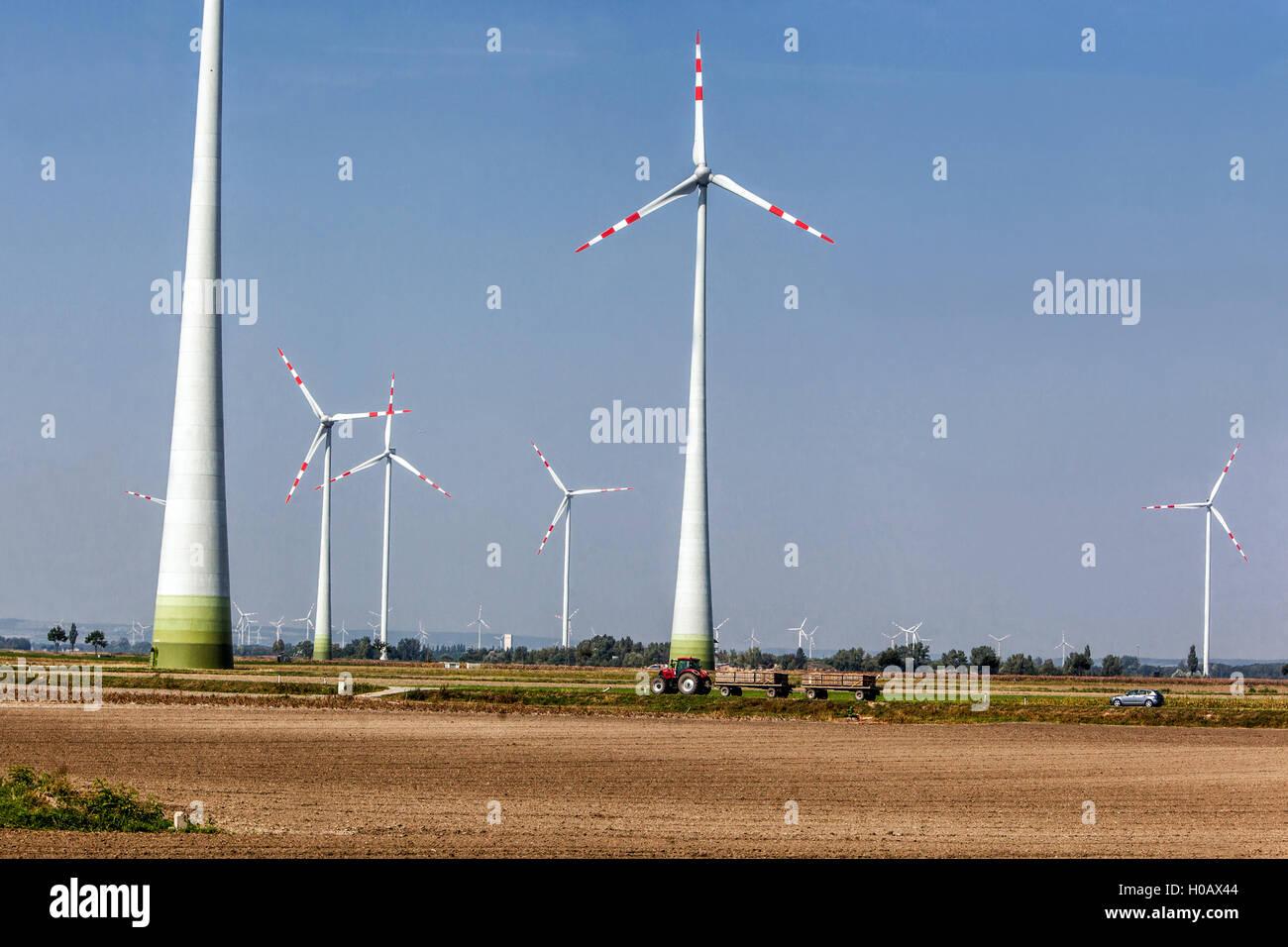Alternative Energie, Wind-Turbinen, Windpark Obersiebenbrunn, Niederösterreich Stockbild