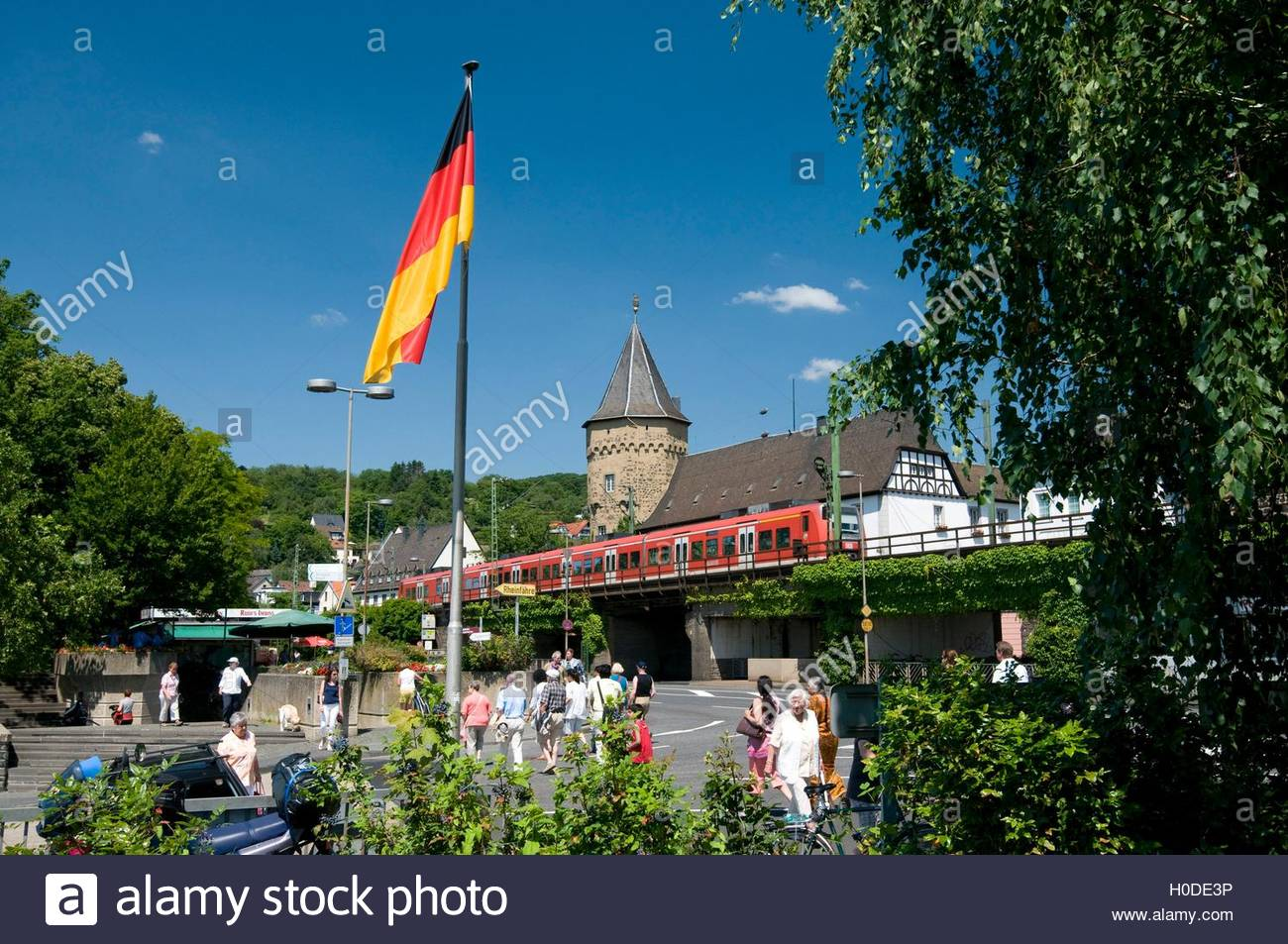 BLWX090419 [(C) Blickwinkel/McPHOTOx/Rainer Waldkirch Tel. + 49 (0) 2302-2793220, E-mail: info@blickwinkel.de, Internet: Stockbild