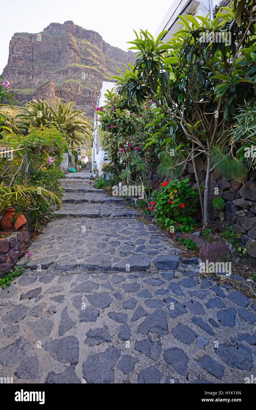 Bergdorf Masca, Teno Gebirge, Teneriffa, Kanarische Inseln, Spanien Stockbild