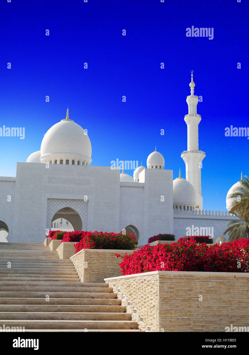 Sheikh Zayed Moschee in Abu Dhabi Stockbild
