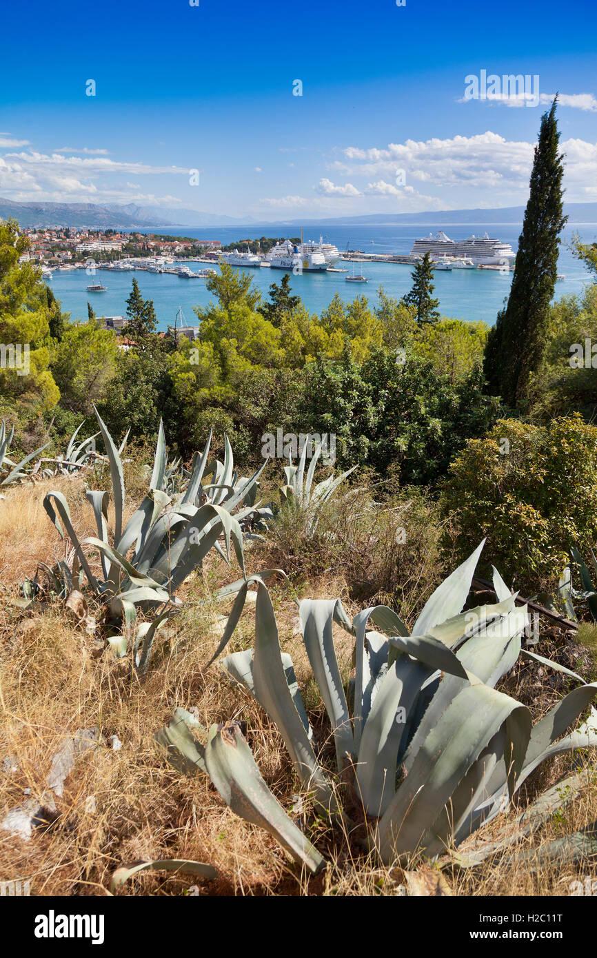 Blick vom Marjan-Hügel mit Blick auf die Kreuzfahrtschiffe Split, Split, Kroatien. Aloe Sukkulenten im Vordergrund Stockfoto
