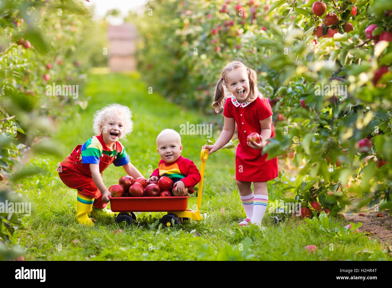 fruit farm spielen