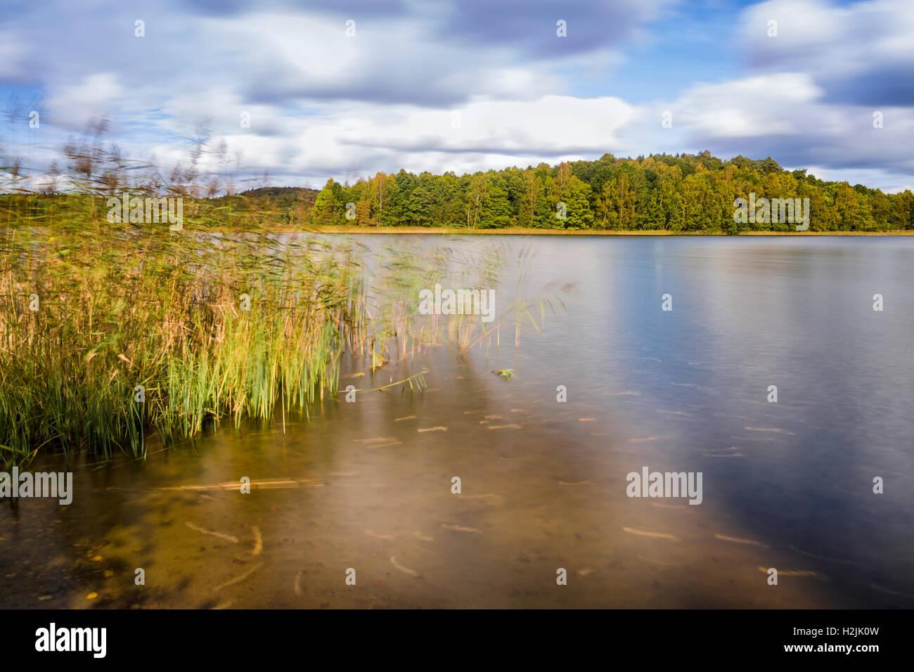 Schilf und den schönen, typisch schwedischen Sommer lange Belichtung Landschaft Wasserlandschaft Model Release: Stockbild