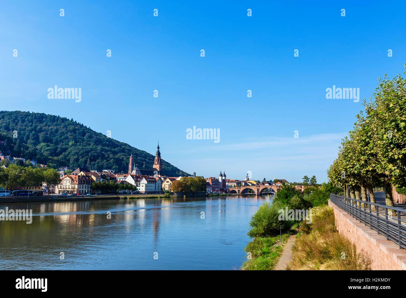Der Fluss Necke mit Blick auf die Altstadt und die alte Brücke, Heidelberg, Baden-Württemberg, Deutschland Stockbild