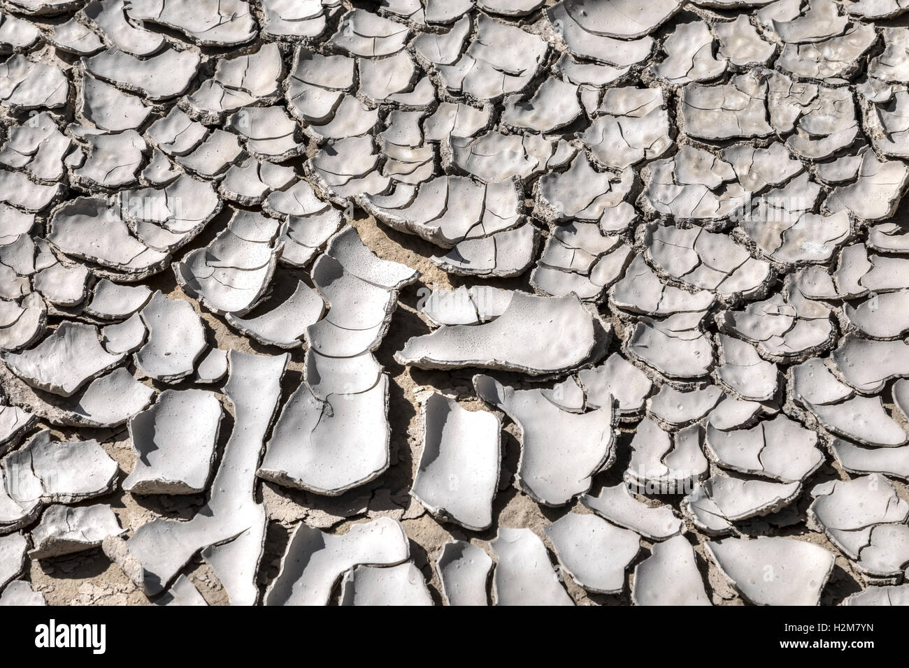 rissige, trockene Böden Stockbild