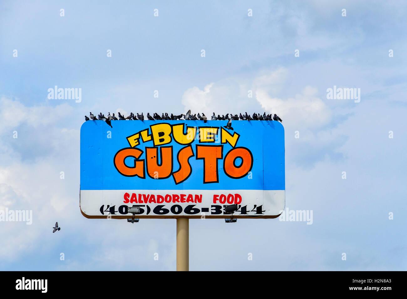 Tauben oder Rock Tauben, Columba Livia, strömen auf das Pol-Zeichen von El Buen Gusto, 2116 SW 74, Oklahoma Stockbild