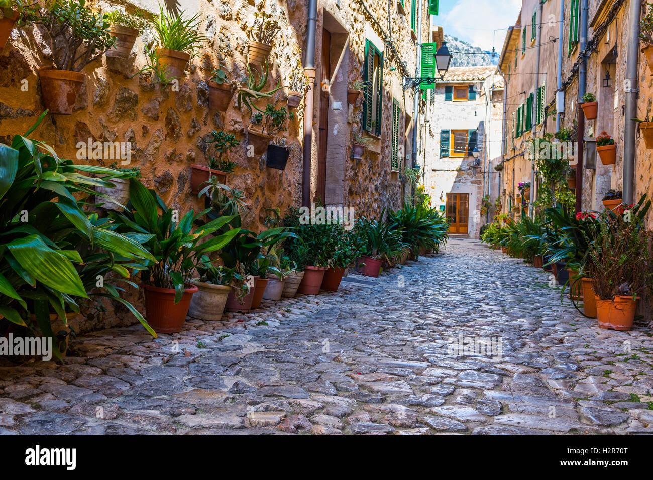 Pflanze Street in Valldemossa, Mallorca Stockbild