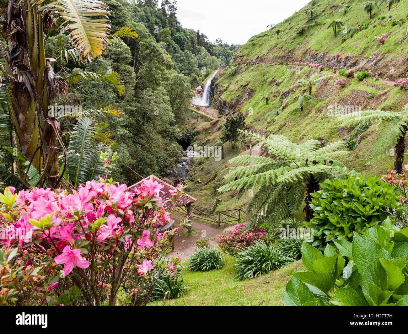 Ribeireo Dos Caldeirões Schlucht und Wasserfall. Inmitten von üppigen subtropischen Inselvegetation einen Stockbild