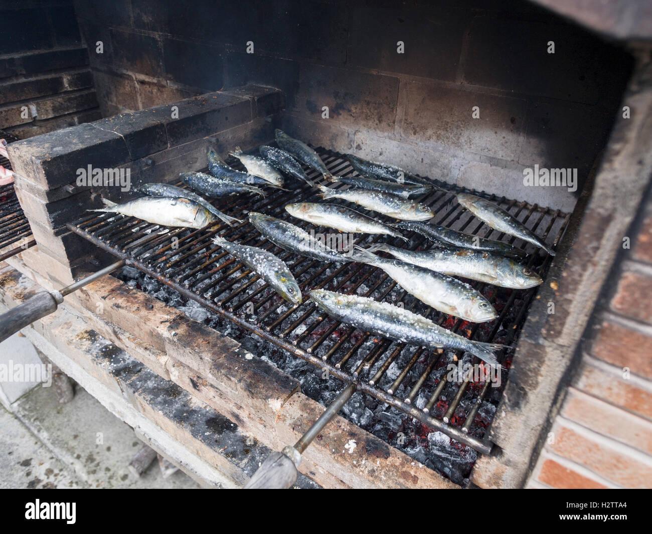 Gesalzene Sardinen Grillen auf einem Wirtschaftsinstrument BBQ. Große Stücke von Steinsalz Geschmack frischer Stockbild