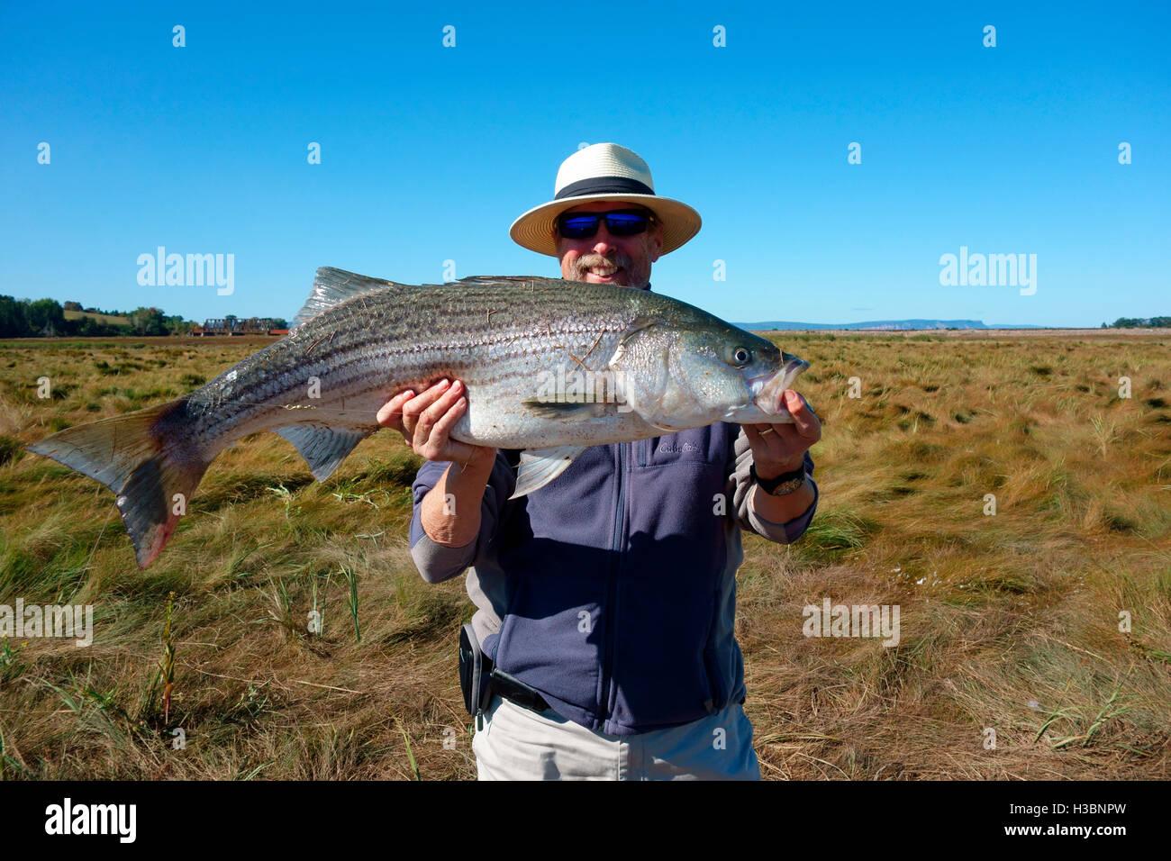 Monster Fish Stockfotos & Monster Fish Bilder - Alamy