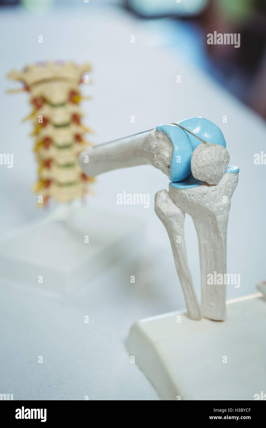 Knee Joint Stockfotos & Knee Joint Bilder - Alamy