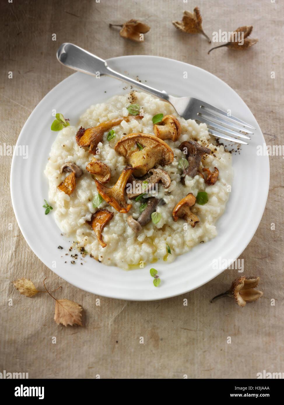 Wiild Pfifferlinge oder Girolle, Pied de Mouton Pilze oder Igel, Pied Bleu oder blau Fuß Musrooms mit Nudeln Stockbild