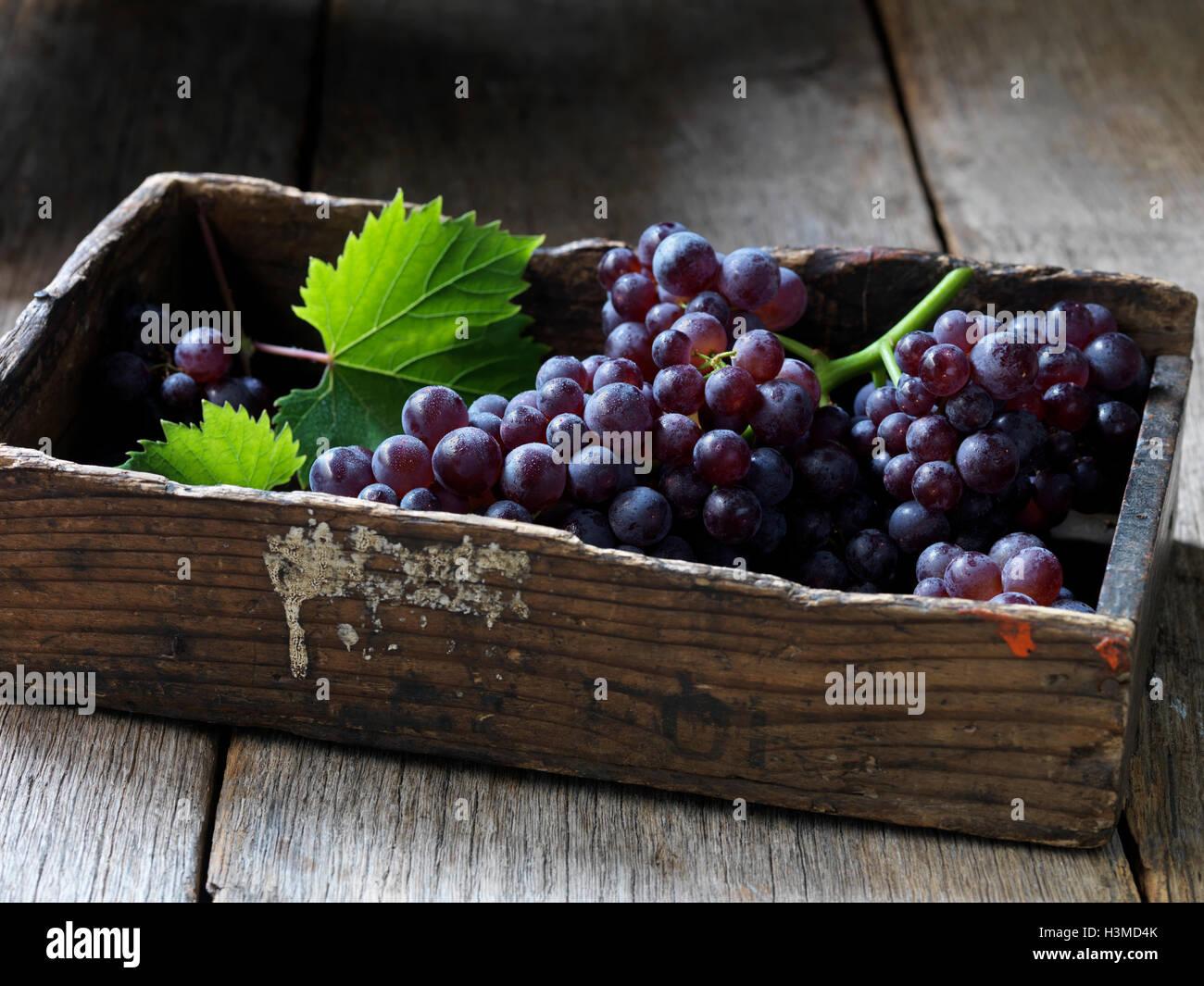 Frisches Bio-Obst, Erdbeer-Trauben Stockbild