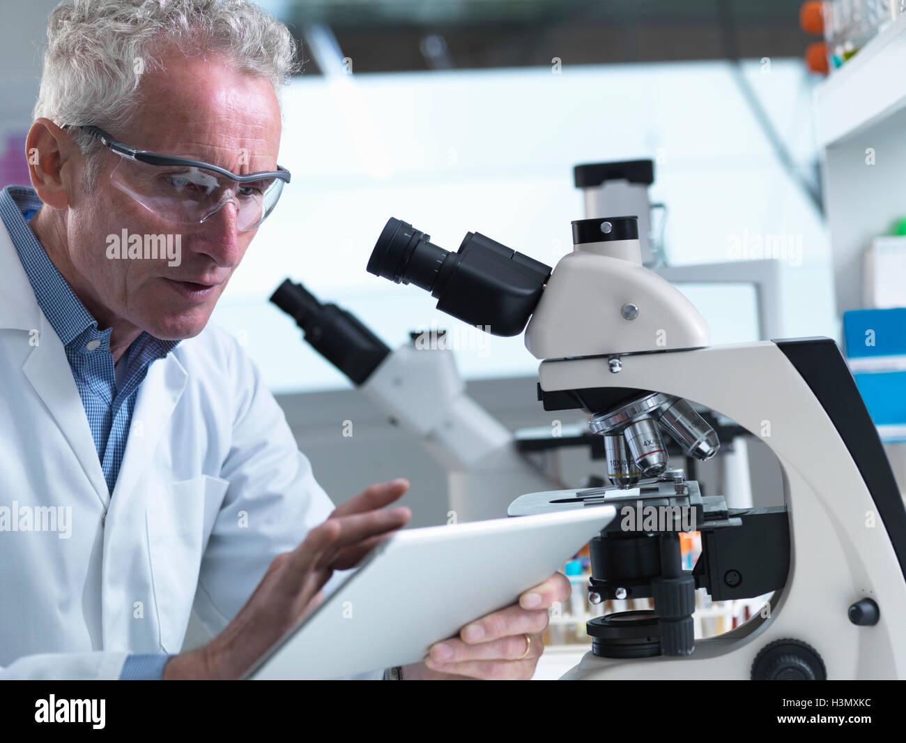 Anzeigen von Informationen auf digital-Tablette in einem Labor Forscher Stockbild