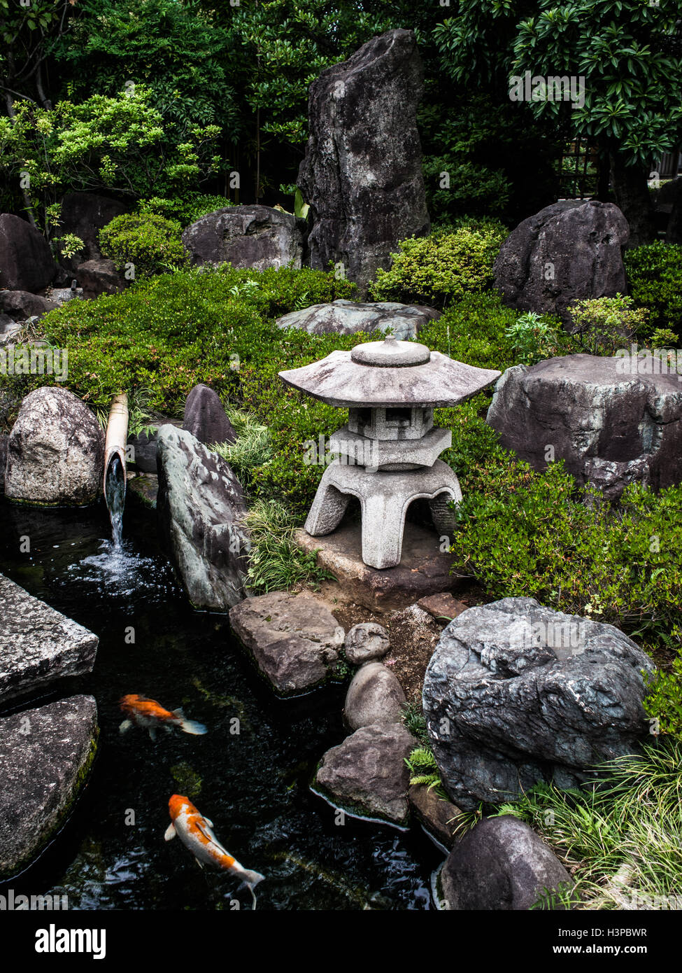 Japanischer Garten Koi Ishidoro Stromt Wasser Aus Einem Bambus