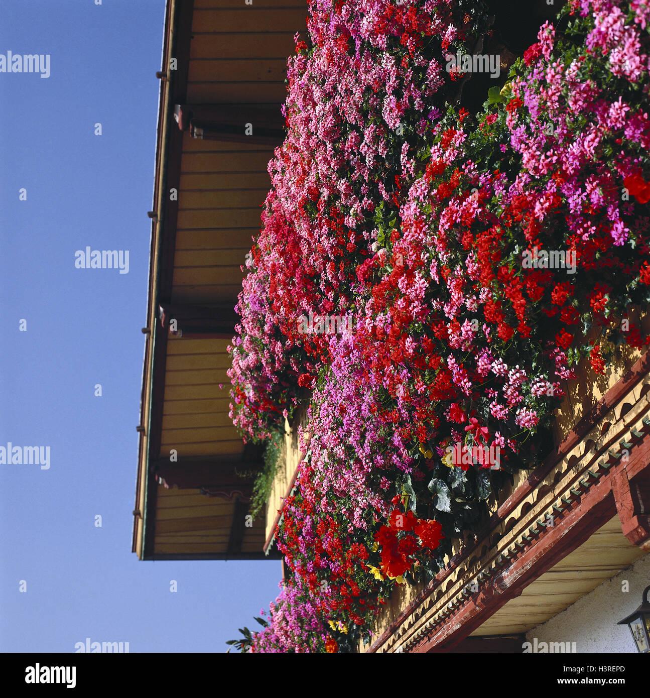 Wohnhaus Detail Balkone Geranien Haus Balkonblumen Balkon