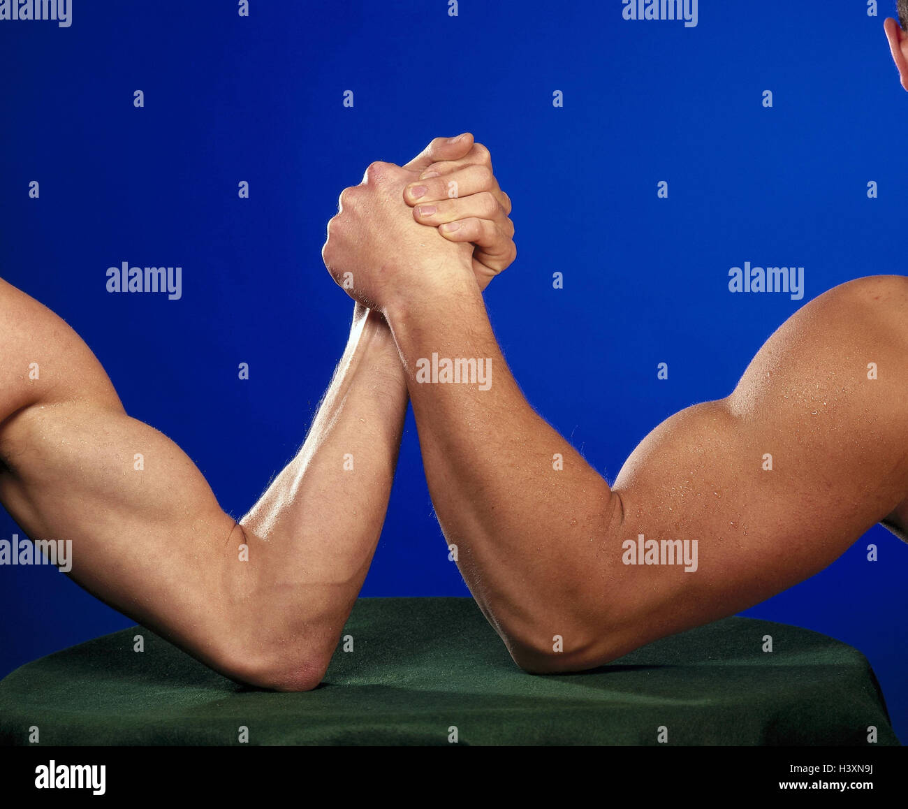 Ungewöhnlich Muskeln In Den Armen Ideen - Menschliche Anatomie ...