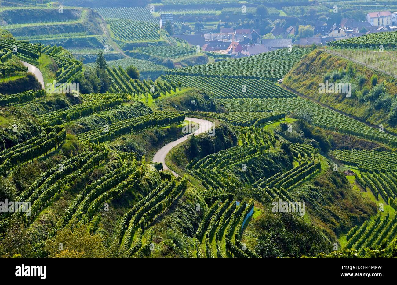 Terrassen Farbe deutschland baden württemberg kaiserstuhl wein terrassen