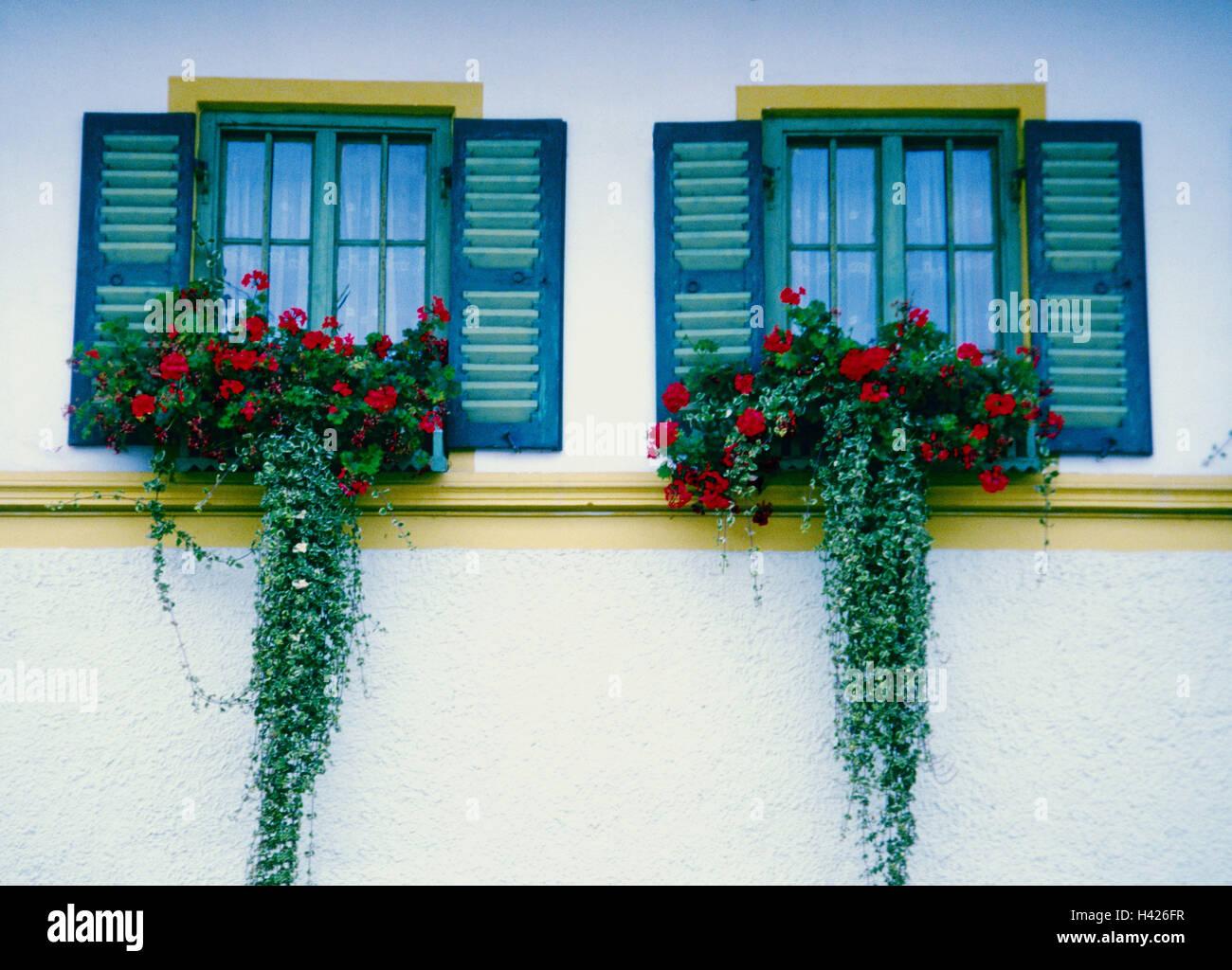 Residenz Fassade Detail Windows Blumenschmuck Gebaude Haus