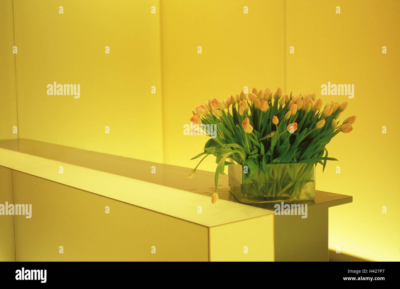 Rezeption Bar Vase Tulpen Rezeption Empfangshalle Lobby